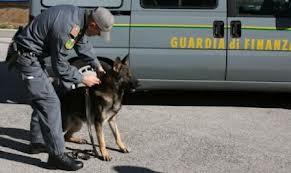 guardiafinanza cane