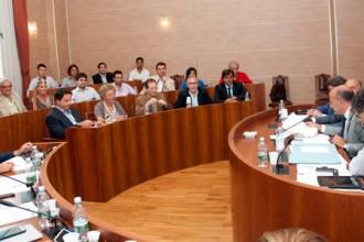 Senato Cda universita