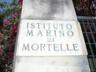 Istituto Marino Mortelle