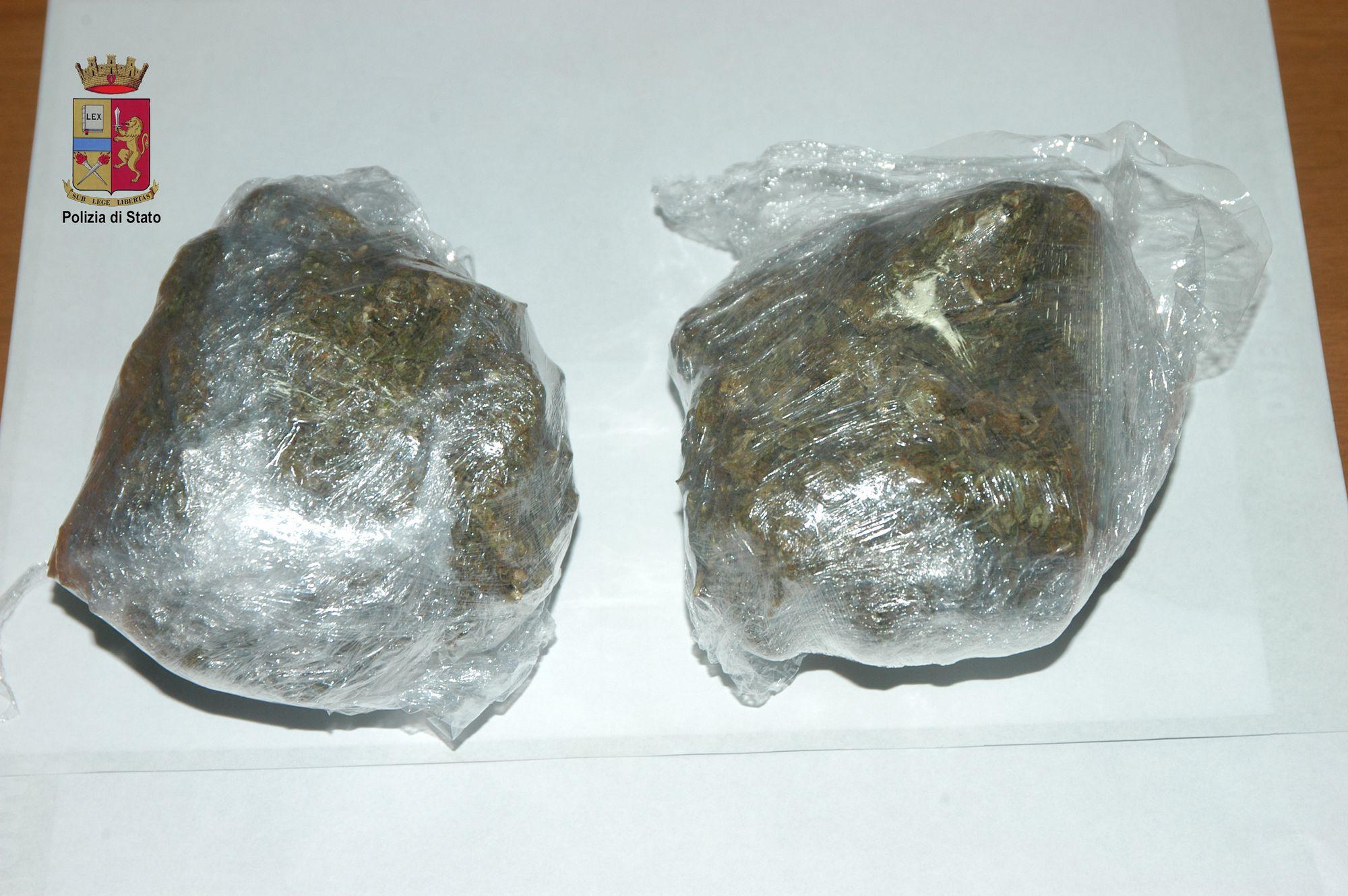 tn marijuana2