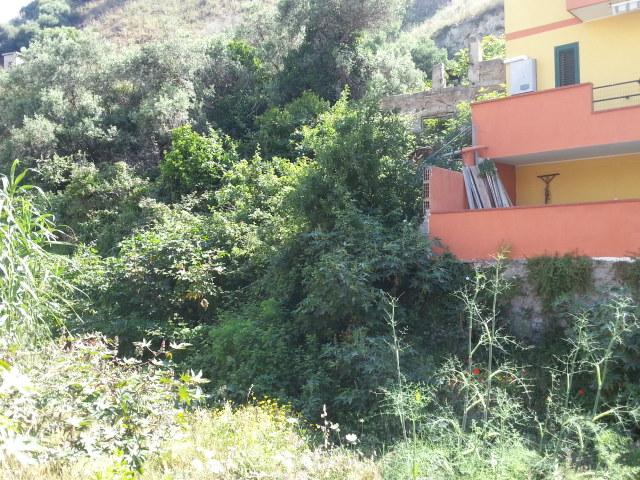torrente Bisconte -Catarratti 3