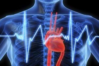 cuore cardiologia