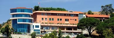 Istituto Neurolesi