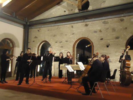 Orchestra Ars Musica