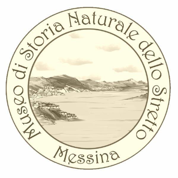 Museo-di-Storia-Naturale-dello-Stretto-di-Messina-nel-Mediterraneo