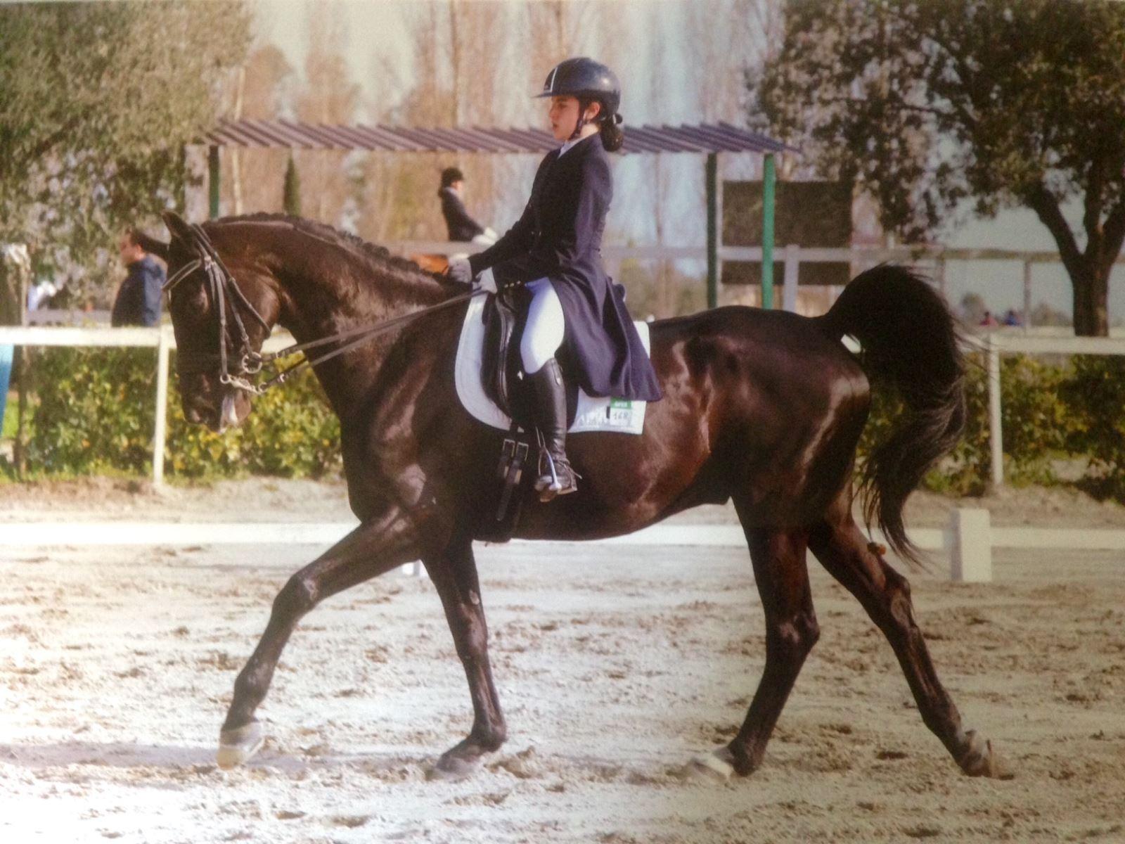 emma carcaterra equitazione
