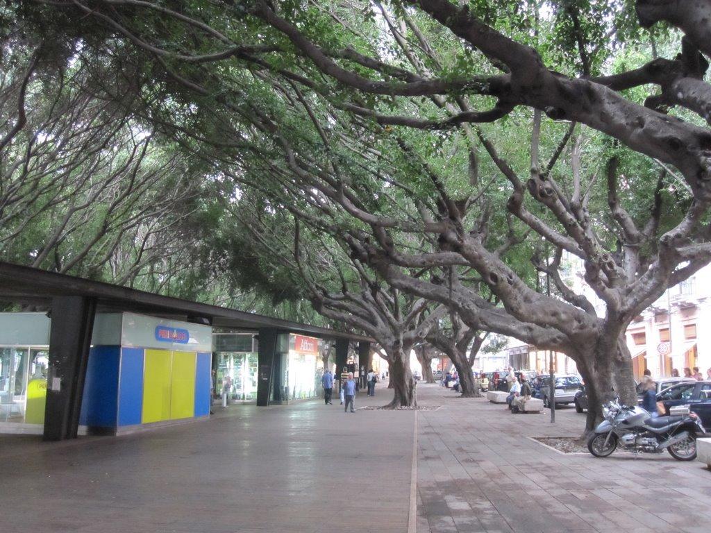 Minivolley a Piazza Cairoli. Gioco e gare per 300 bambini