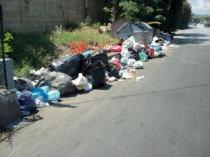 Spazzatura sulla strada stale 113 da San Saba a Ponte Gallo 006
