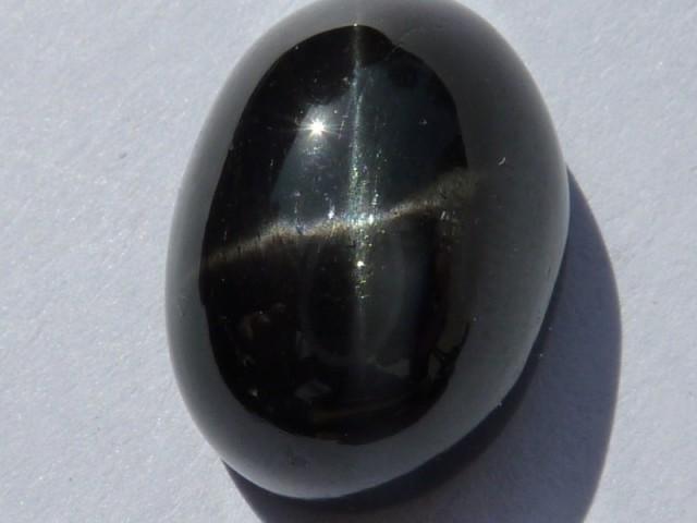 oliva greca