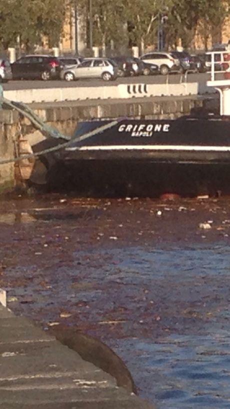 spazzatura in mare 2