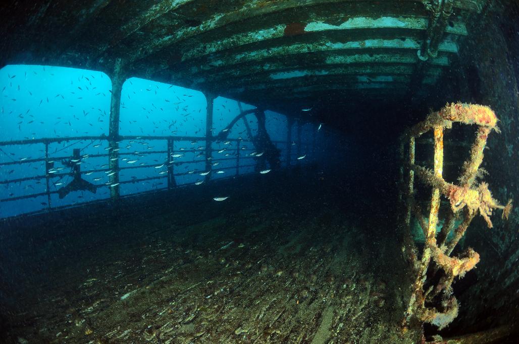 cariddi affondata