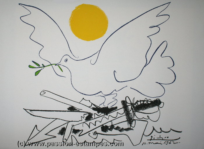 colomba no pace