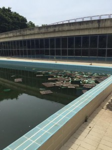 piscina villa dante