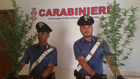 CC operanti (1)