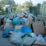 spazzatura-da-ponte-gallo-a-san-saba-foto-29-9-16-003