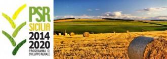 psr-sicilia-2014-2020-agricoltura