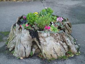 fioriere-giardino-tronco-albero-19