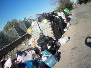 spazzatura-orto-liuzzo-tarantonio-foto-28-dic-16-ore-1545-007