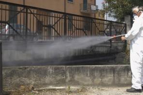 Disinfestazione nella I Circoscrizione di Messina: le date e le vie interessate