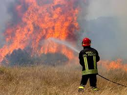 vigili del fuoco, rogo bosco