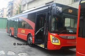autobus rossi
