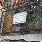 Messinambiente-foto-sparta-inizio-rettilineo