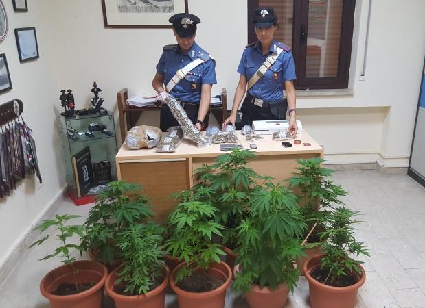 Droga: controlli Polizia Locale, due arresti a Trieste