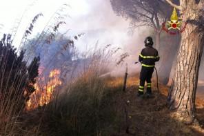 Incendi a Messina. Associazioni di volontari insieme per la prevenzione