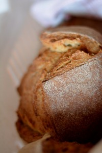 Foto pane di grano duro - Evento slowfood Milazzo