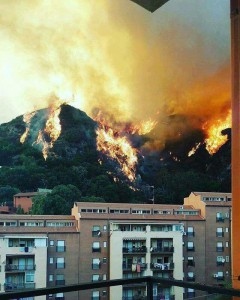 incendi sui social
