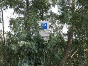 Foto dei cartelli del parcheggio coperti dalle piante - Fermata tram Annunziata
