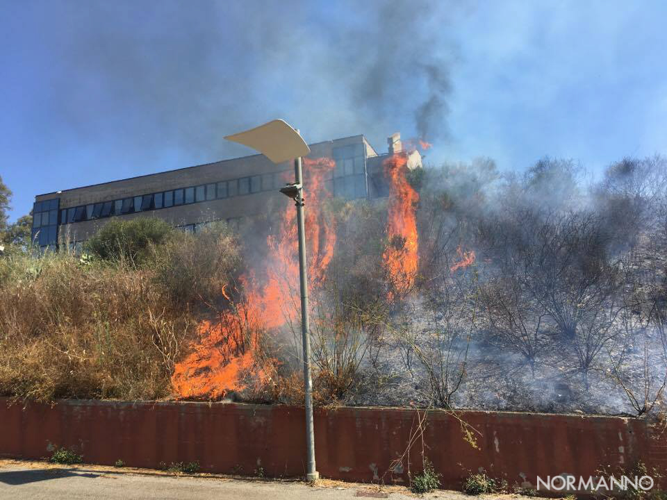 Foto fiamme 03 - Incendio dipartimento di Ingegneria - Messina