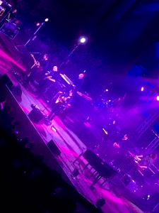 Foto di Daniele Silvestri durante il concerto - Teatro Antico di Taormina