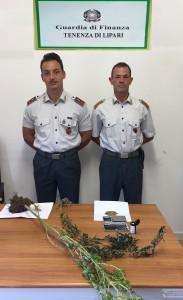 Foto della marijuana sequestrata a Lipari