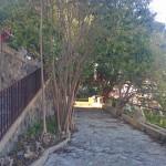 Foto dell'inaugurazione dei Giardini di Montalto