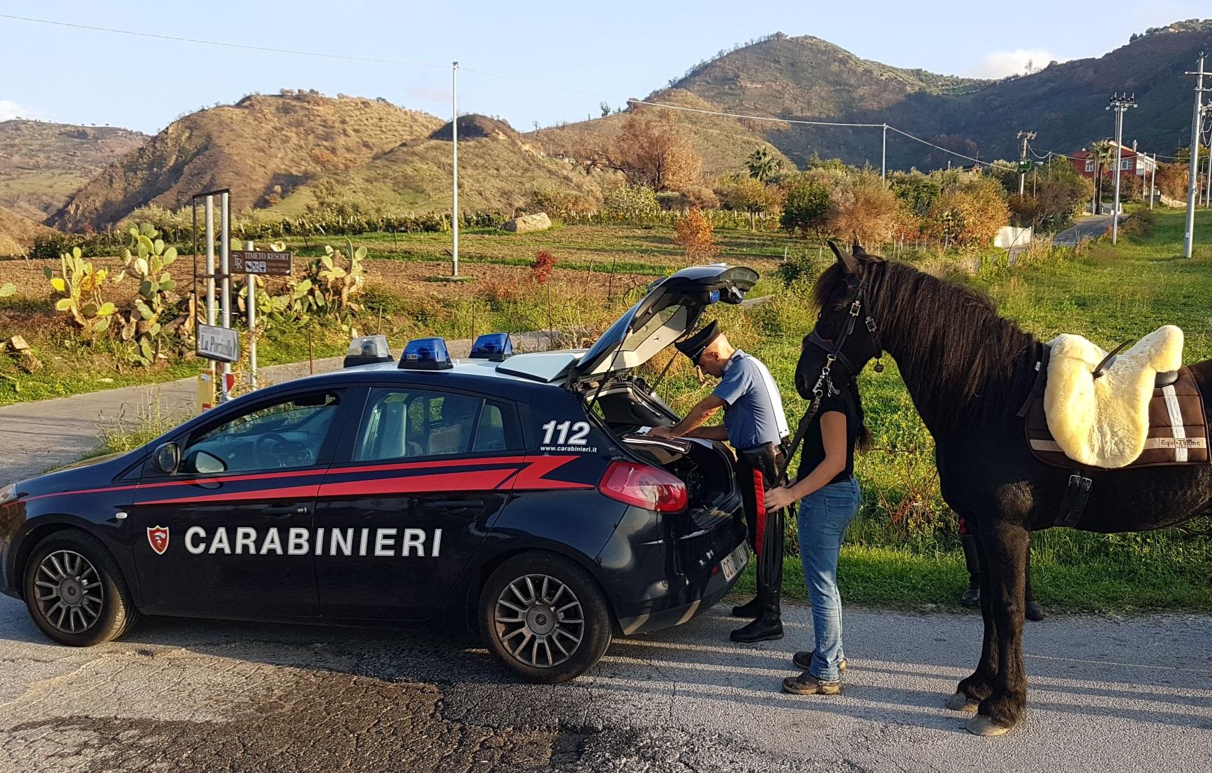 Messina: Corse clandestine dei cavalli, 9 provvedimenti cautelari