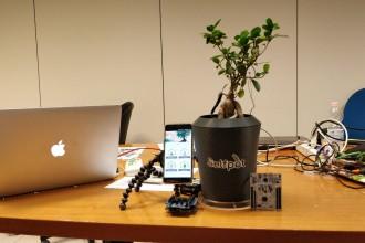 SelfPot - vaso tecnologico che percepisce le esigenze delle piante