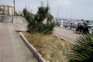 Aiuola della passeggiata a mare prima dell'intervento del personale della Marina del Nettuno - Messina