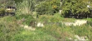 Foto del torrente santo stefano