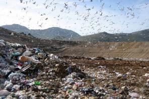 Emergenza rifiuti. Ecco la situazione dei tre maggiori impianti della Sicilia