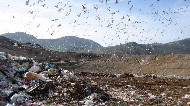 foto di repertorio - discarica rifiuti