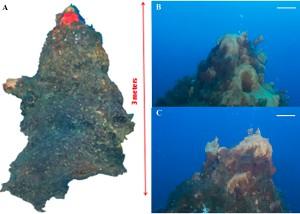 foto degli studi sui camini vulcanici dell'isola di panarea - isole eolie - messina