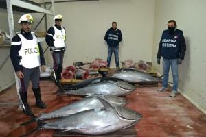 foto del tonno rosso sequestrato
