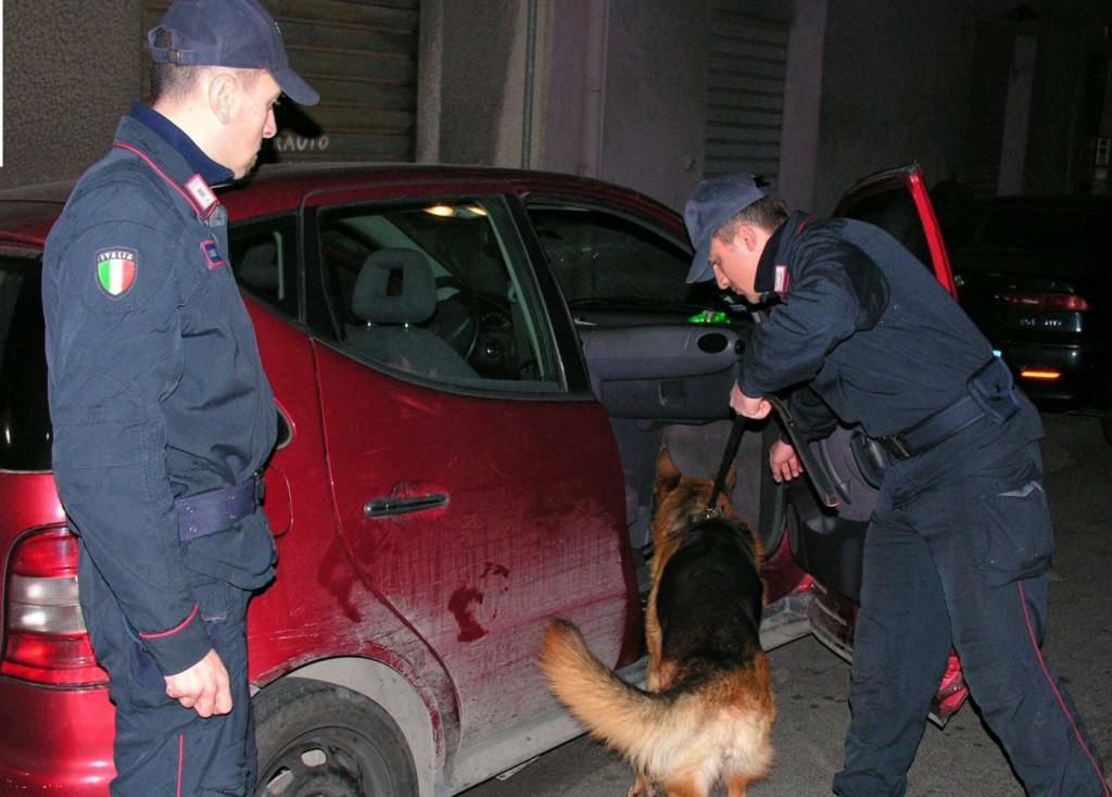 Foto del Nucleo cinofilo dei Carabinieri durante le attività di controllo