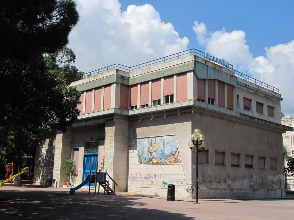 foto dell'acquario di messina