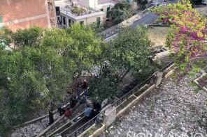 Giardino di Montalto: novità sulla revoca della concessione a PuliAmo Messina