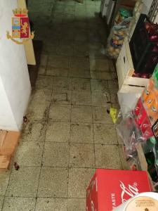 controlli alla movida - scarse condizioni igieniche nei locali del centro di messina