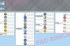 Elezioni Messina. Ecco il fac simile della scheda elettorale del 10 giugno