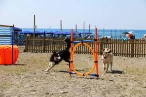 Inaugurata a Santa Teresa di Riva la Bau Beach: una spiaggia a misura di cane
