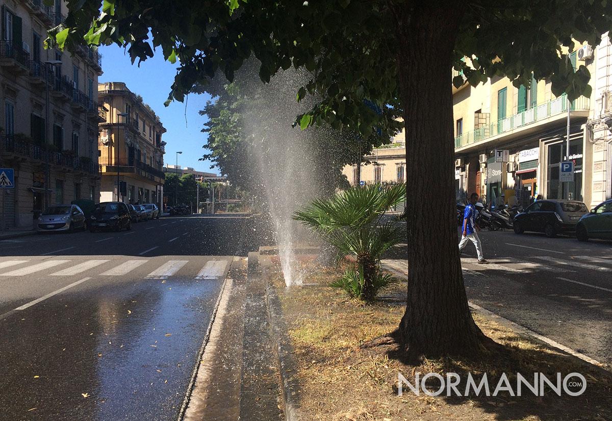 foto di un getto d'acqua che fuoriesce da un'aiuola di via garibaldi - messina